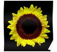 Sunflower Portrait. Poster