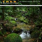 ECO TREK BROCHURE COVER by emzy999