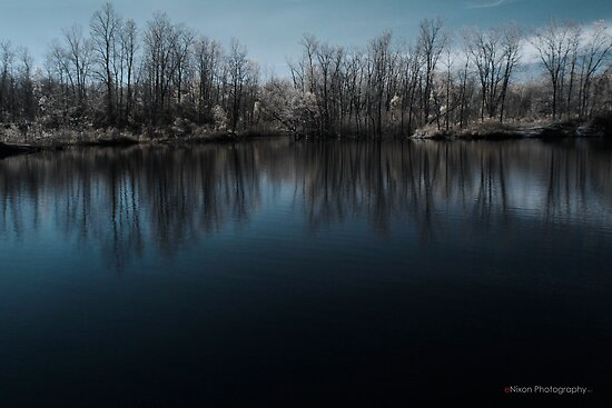 Hawk Island in Color-IR by eNixon Photography