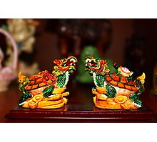 The twin turtle dragons Photographic Print