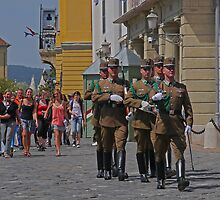 Changing guards at the Castle, Hungary by Margaret  Hyde