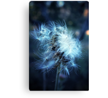 Voice of a Thistle Canvas Print