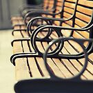 Park Bench by Caroline Fournier
