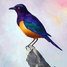 Starling by freeminds