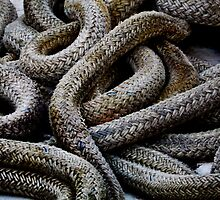"(rope) ""Cobras""  by Laurie Minor"