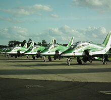Saudi Hawks by Andy Jordan