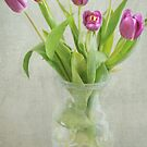 Purple Tulips by photecstasy
