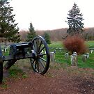 Cannon on Cemetery Hill in the Gettysburg National Cemetery by Jane Neill-Hancock
