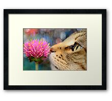 Psychedelic Scent...  Framed Print