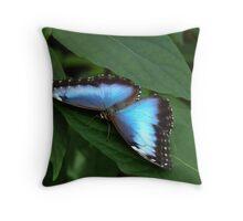 Blue Morpho #2. Throw Pillow