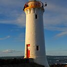 Griffiths Island Lighthouse. Port Fairy, Victoria, Australia. (1859) by Ralph de Zilva