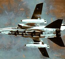 Panavia Tornado IDS (interdictor/strike) fighter-bomber by Dennis Melling