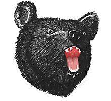 Hey it's a Bear  Photographic Print