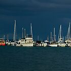 Winter Storm over Hobson's Bay by TJSPictures