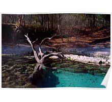 Little River Spring. Poster