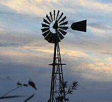 Windmill Sillouette with Gray, Blue Sky in Kansas by ROBERTDBROZEK