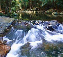 cedar creek  ... by gail woodbury