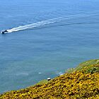 Boat at Pwlldu Head, Gower Peninsula by Paula J James