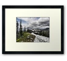 Montana Summer Framed Print