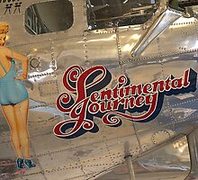 Sentimental Journey by Wayne Ross