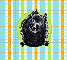 Schipperke Cute Carribean Plaid by offleashart