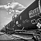 Down the Line B/W by Adam Northam