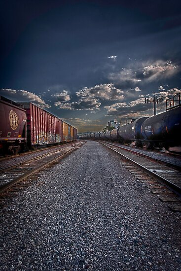 Follow the Tracks by Adam Northam