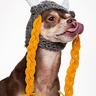 Viking the Dog by potterazzi