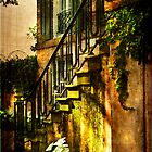 Savannah Stairs by Patito49