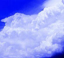 Cauliflower Cumulonimbus Cloud by Vince Scaglione
