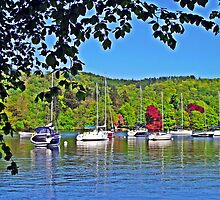 Boats on Windermere by trish725