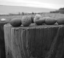 Pebbles on a groyne by LightPhonics
