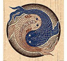 yin yang fish, shuiwudao mandala Photographic Print