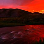 Red River 2 by Barrett Mand