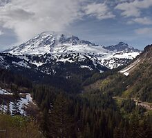 Rainier Spring by mikereid