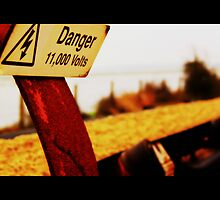 Danger, Danger, High Voltage by playfulkit