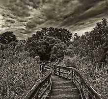 Mead Gardens Boardwalk HDR by MKWhite