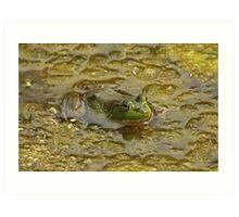 Frog October Art Print