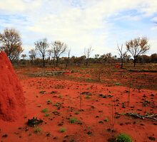 Red Earth by James mcinnes