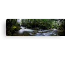 Meander Forest pan Canvas Print