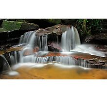 Falls of the Wilderness Photographic Print
