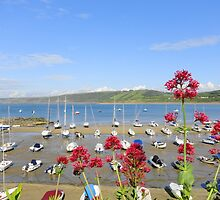 New Quay Harbour Wales by Julielorraine