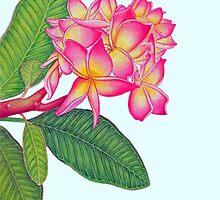 Frangipani Watercolour by joeyartist
