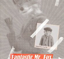 Fantastic Mr. Fox Tabloid by Robert Knight