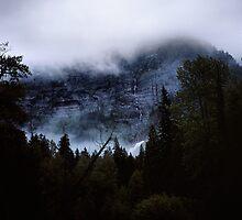 Avalanche Creek, Glacier N.P., Montana by Rodney Johnson