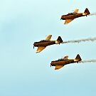 RCAF Harvards by deb cole