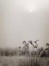 Hush by KBritt