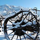 Winter Wheel  by Nicole  Markmann Nelson