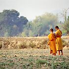 Morning Monks in Laos. by Phil Bower