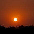 Sunset on a Hot Day In Southeast Missouri by barnsis